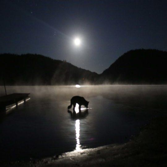 https://www.capauleste.com/wp-content/uploads/2016/03/lac-des-sables-nuit-540x540.jpg